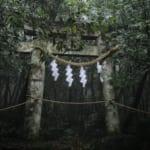 Follow the Pilgrimage Path of Mount Omoto to Spiritual Omoto Shrine