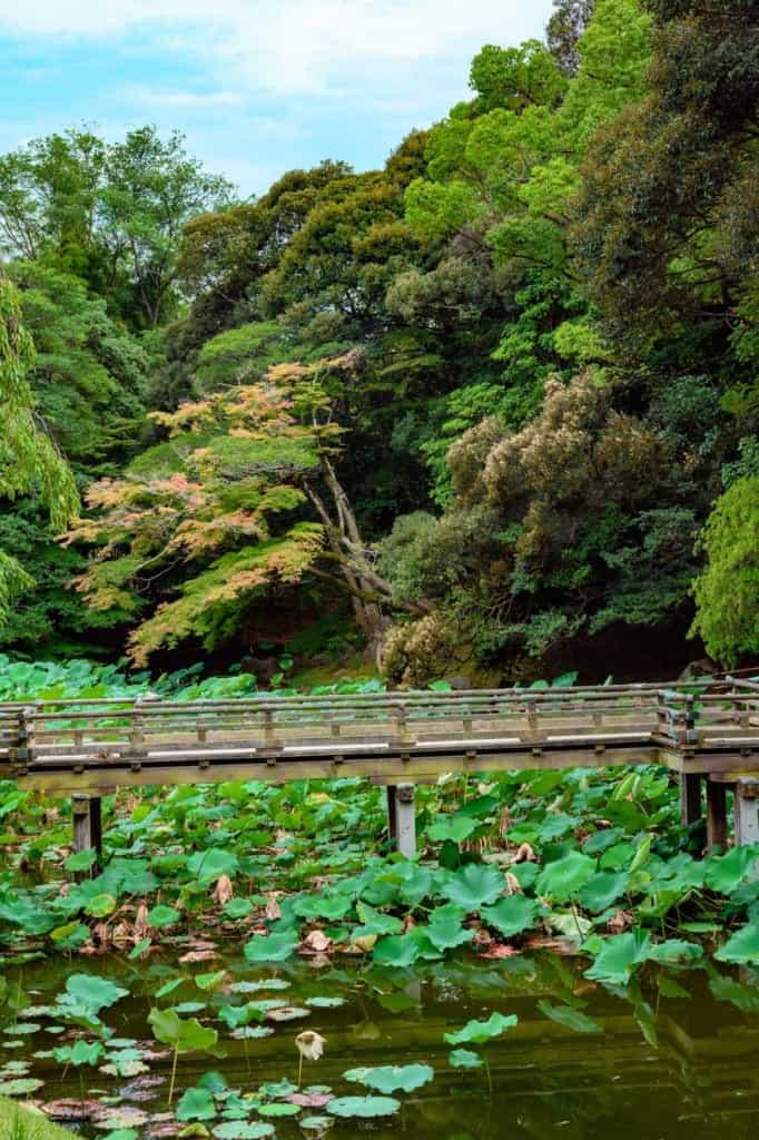 Okayama Korakuen Japanese Garden