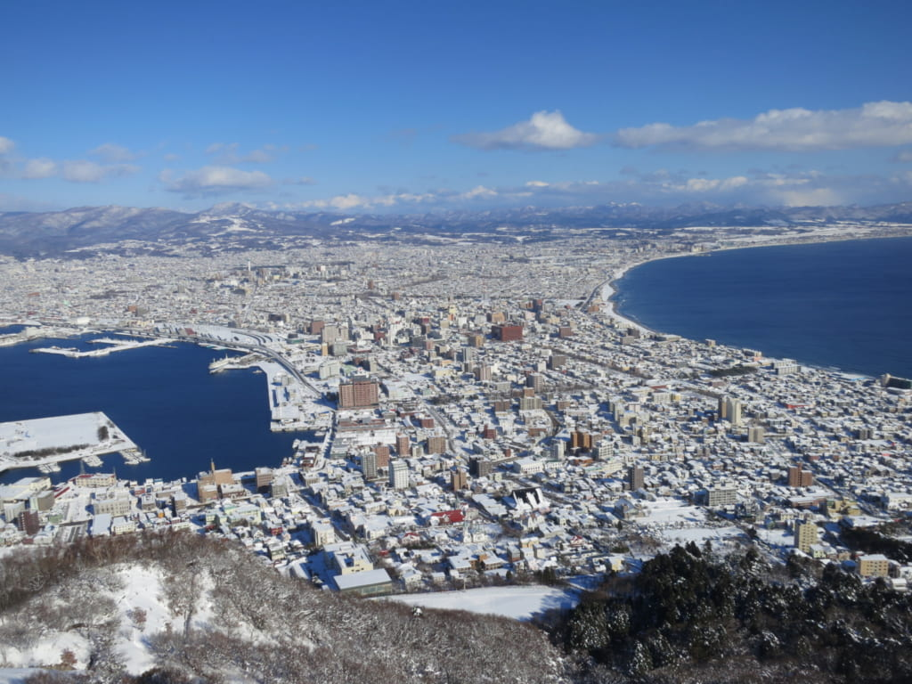 View from Mt Hakodate in the day